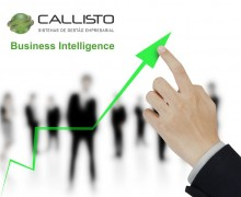 Callisto Business Intelligence